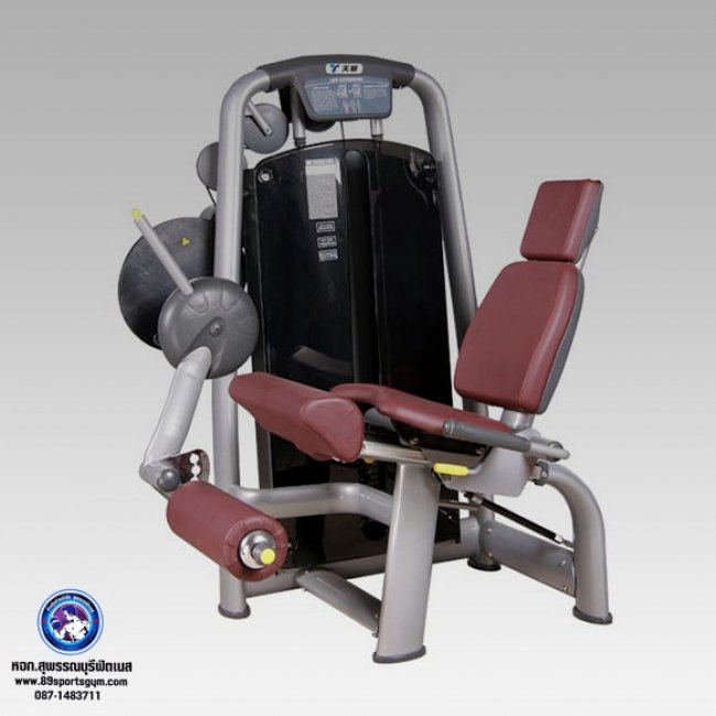 LM-6002 Seated Leg Extension